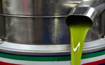 El Ministerio destaca la buena comercialización de aceite hasta final de enero