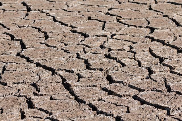Campaña contra la sequía